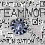 Executive coaching and Team development